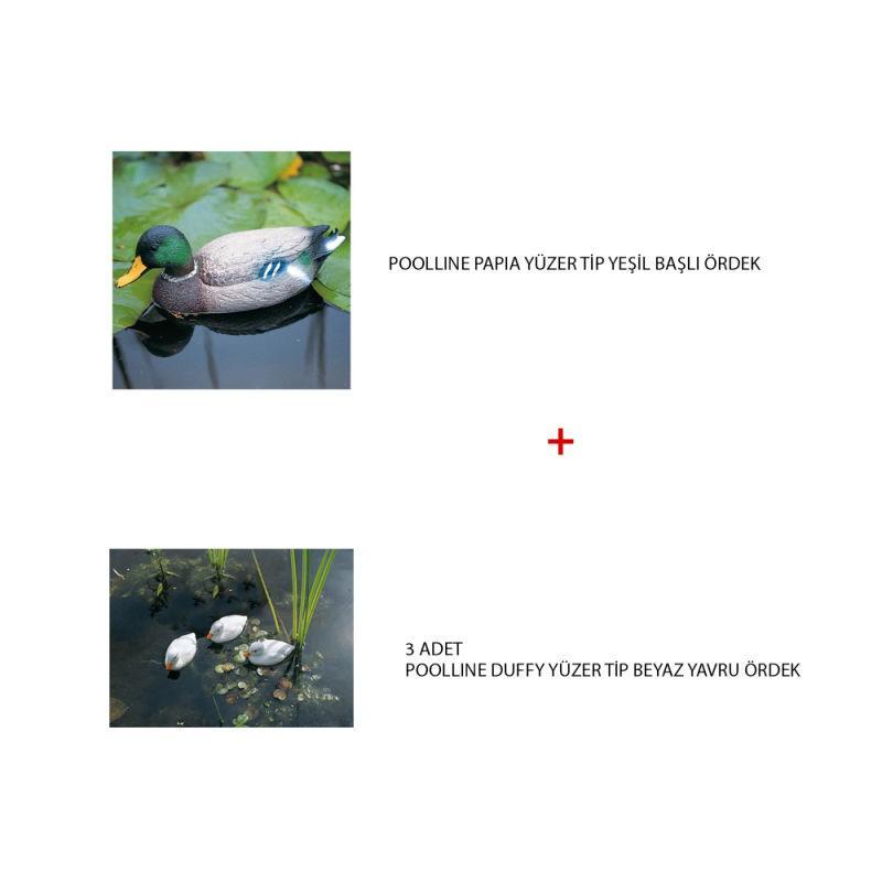 - Süs Havuzu Ve Gölet Setleri 4