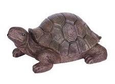 POOLLINE - Dekor Fıskiye Kaplumbağa Küçük