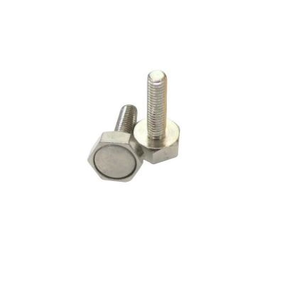 SİSO - Poolline Sauna Kapısı Nikel Magnet Manyetik Vida 14Mm